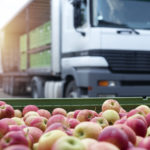 Beat the Market Odds with Food Distribution Software
